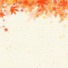 紅葉 もみじ 秋 和紙風