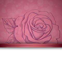 Sketch  rose background