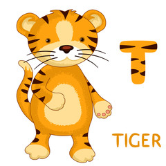 letter T, Tiger , animal ABC