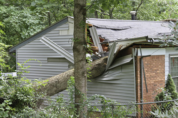 Zelfklevend Fotobehang Onweer Small House Crushed By a Large Oak Tree