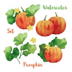 Watercolor Vector Pumpkin Set