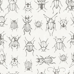 Seamless monochrome pattern with bugs.