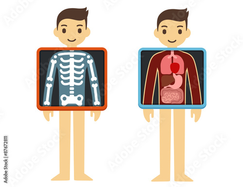 Two illustrations of cute cartoon adult man with x ray screen two illustrations of cute cartoon adult man with x ray screen showing his internal organs ccuart Choice Image