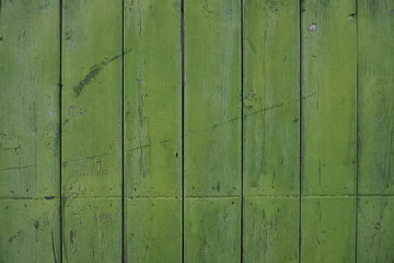Green colored wooden background