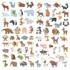 Animals cartoon