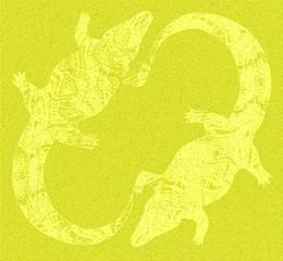 The yellow Mississippi Alligators