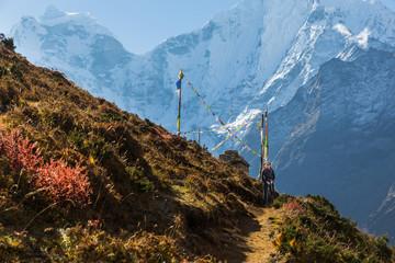 Fototapete - Woman backpacker standing trail, Kangtega mountain ridge snow pe