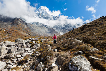 Wall Mural - Woman backpacker standing in front Ama Dablam mountain.