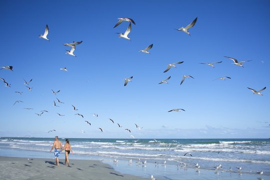 Couple are walking on beach and seagulls flying with blue sky.