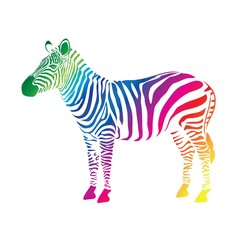Zebra color (cmyk)