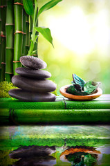 Stones stacked and bowl with green leaves reflected in water