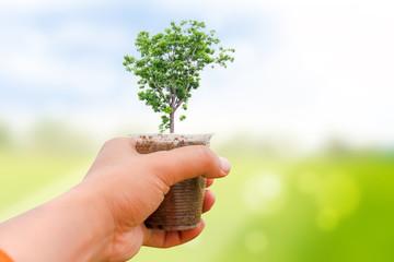 Human plant of tree saving the world.