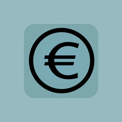 Pale blue euro sign