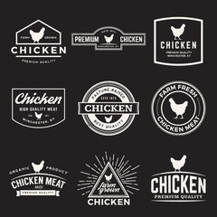 vector set of premium chicken meat labels, badges and design ele