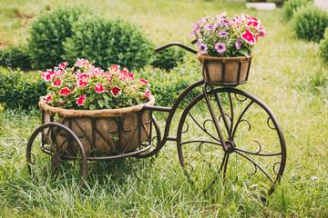 Decorative Vintage Model Old Bicycle Equipped Basket Flowers Gar