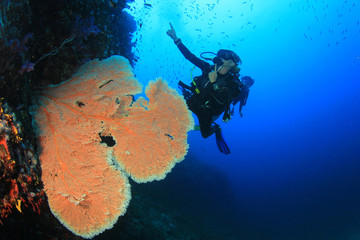 Blonde woman scuba diving on coral reef