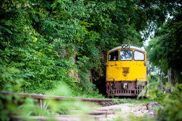 Trains run on tracks through the woods and cliffs