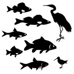 silhouettes of river fish