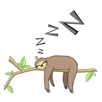 Cartoon sleeping sloth