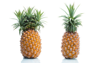 Genetic Modification, pineapple, fruit, modification, strange, s