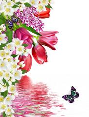 flowers tulips and lilacs. jasmine