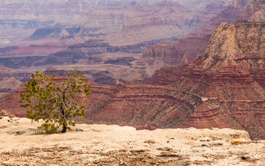 Wall Mural - Grand Canyon