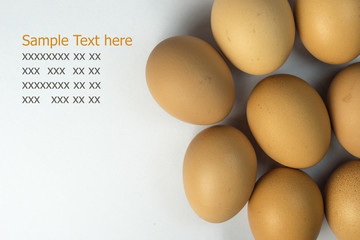 Hen Egg isolate on white background