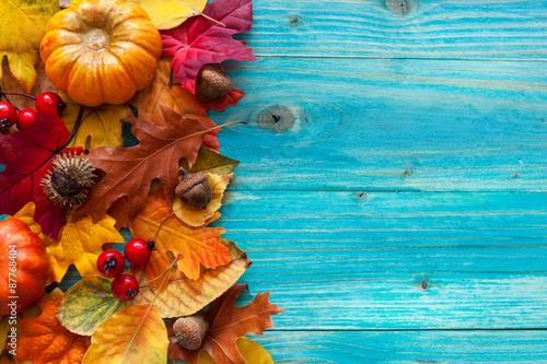 девушка осенние листь ягоды загрузить