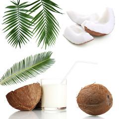 Coconut collage