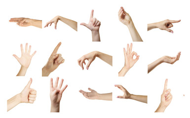 Collage of  hands showing different gestures, isolated on white