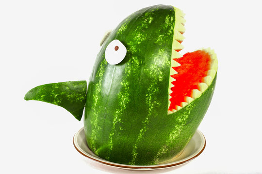 Watermelon shark - Shark carved out of a watermelon