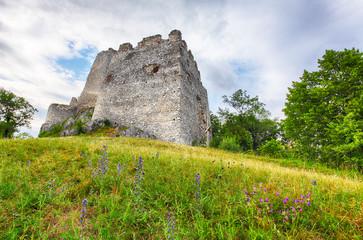 Ruin of castle Tematis, Slovakia nature landscape