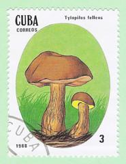 Cuba stamp 1988 - Tylopilus felleus mushrooms
