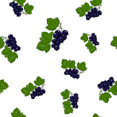 Seamless Pattern of Blackcurrant , Fruit Pattern, Berry Pattern, Vector Illustration
