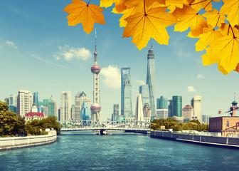 Fototapete - Shanghai skylineand autumn leaves, China