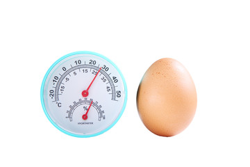 Organic Brown Chicken Egg with Hygrometer Isolated on White Background.