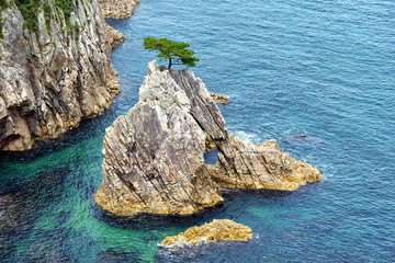 浦富海岸 千貫松島