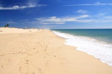 Sandy beach with sunbathing people