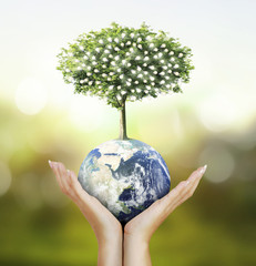 Globe ,earth in human hand, hand holding our planet earth glowin