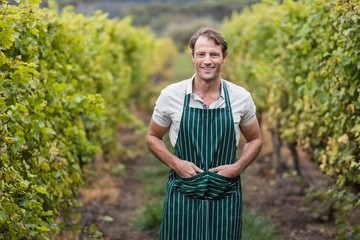 Happy vintner with hands in pockets