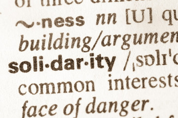 Dictionary definition of word solidarity
