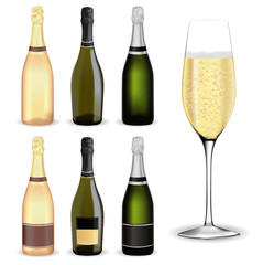 Bottle of champagne and Glass of champagne or sparkling wine