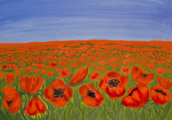 Red poppies on meadow