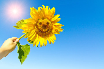 Wall Mural - Happy sunflower in the hand