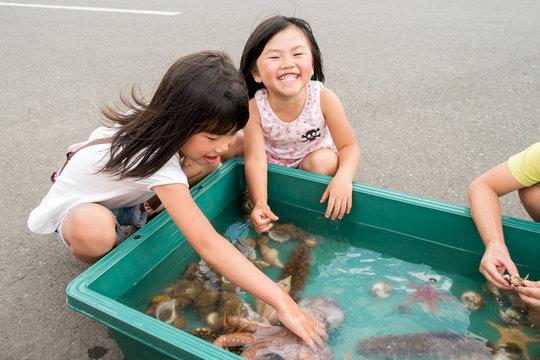 海の生き物に触れる子供達