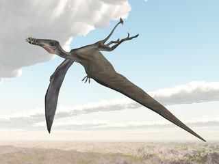 Pterosaur Dorygnathus