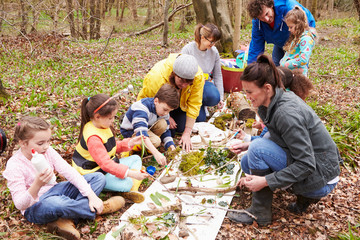 Group Looking For Minibeasts At Activity Centre