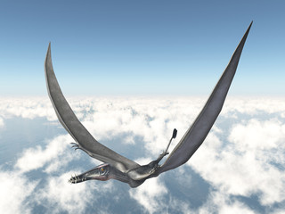 Pterosaur Dorygnathus over the clouds