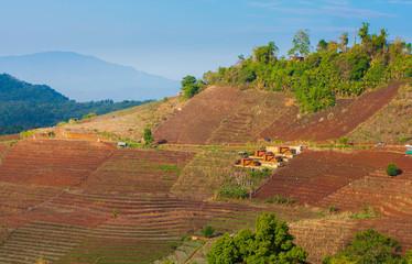 Chiang mai mountian