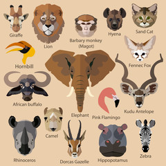 Set of african animals faces isolated icons. Flat style design.